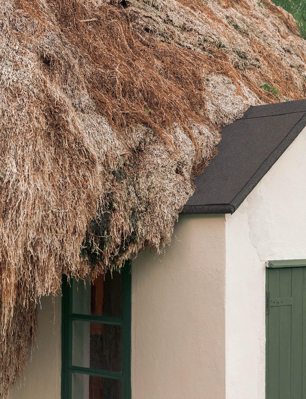 Sould-Nature-Eelgrass-Laeso-1150x1500px-03